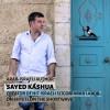 Sayed Kashua on Shtetl
